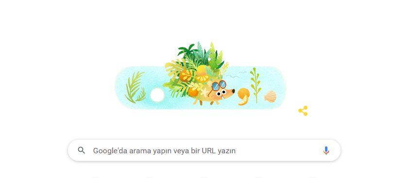 Google Ana Sayfasındaki Yaz 2021 nedir?
