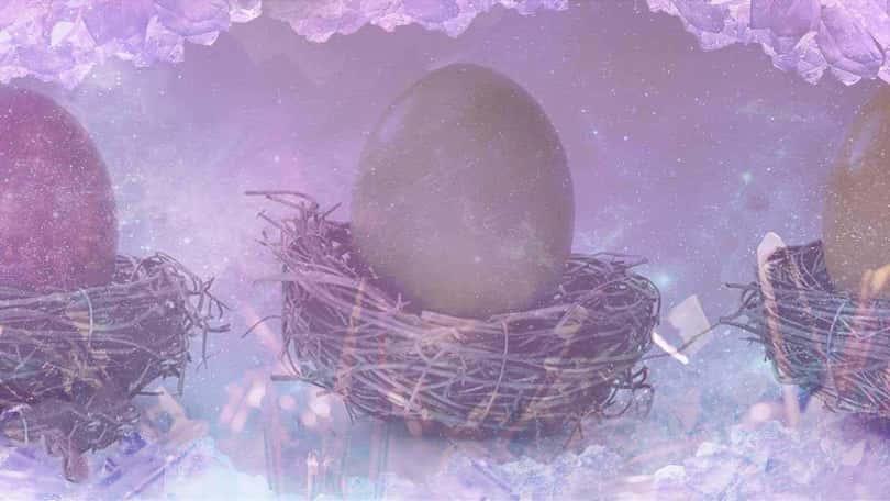 Rüyada Kuş Yumurtası Görmek Ne Anlama Gelir?