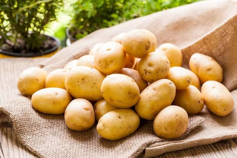 Baby Patates Nedir? Baby Patates Faydaları Nelerdir?